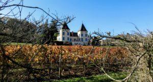 luzech domaine viticole