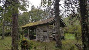 Savanac cabane sous-bois